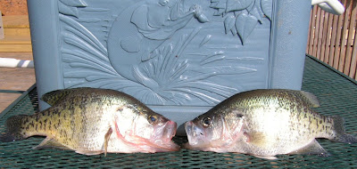talking crappie