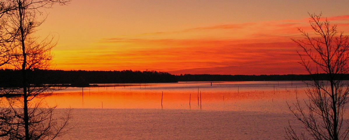 Simply said lake darbonne life for Lake d arbonne fishing report