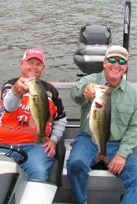 Elshout & Price with two good D'Arbonne bass