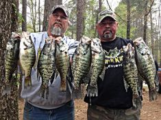 Even though hail and high water, the crappie have been cooperating with the Krappie King!