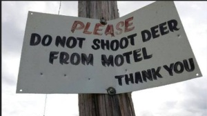 My advice: If this is where you are staying on your hunting trip....look somewhere else...