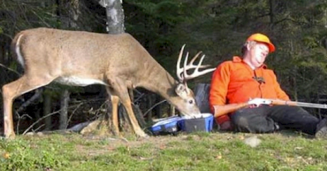 Being alert is the key to successful deer hunting. And it's always good to be close to where they are eating!