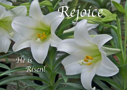 rejoice-he-is-risen-michael-peychich