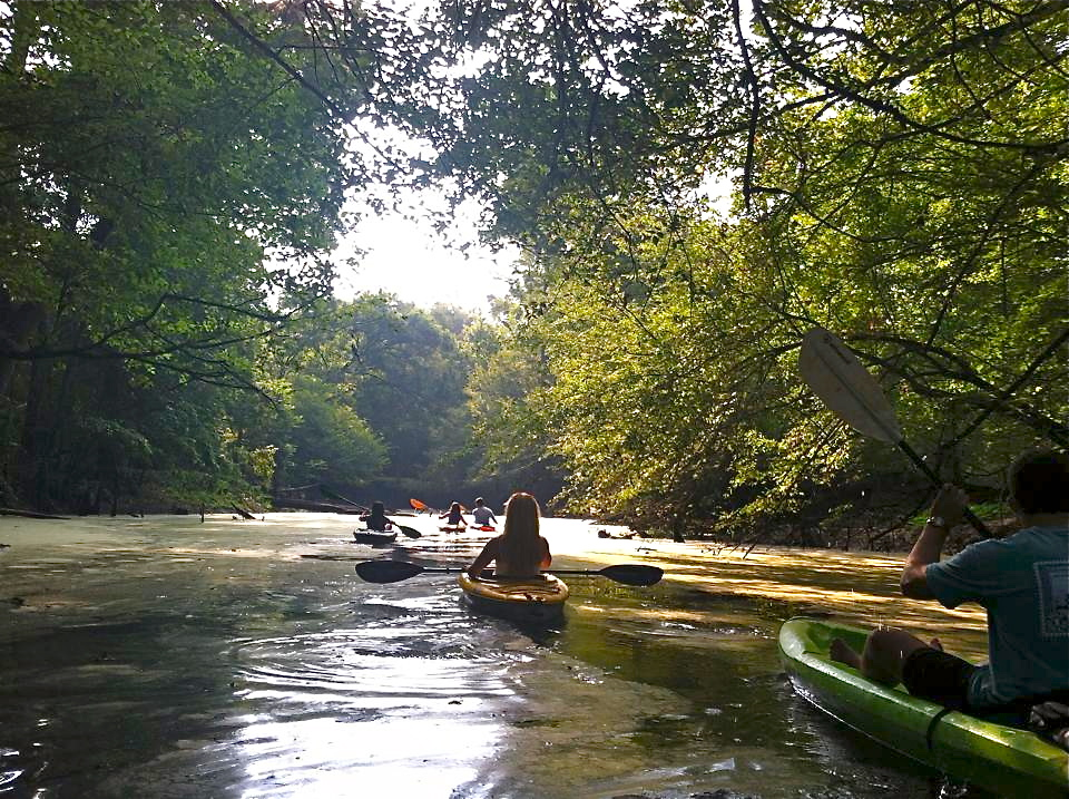 Cool corney creek lake darbonne life for Lake d arbonne fishing report