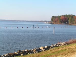 This buoy line keeps boaters a safe distance from the spillway on the lake side.